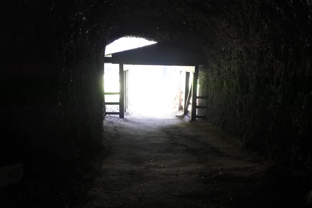 琴浦海岸へ続く洞窟