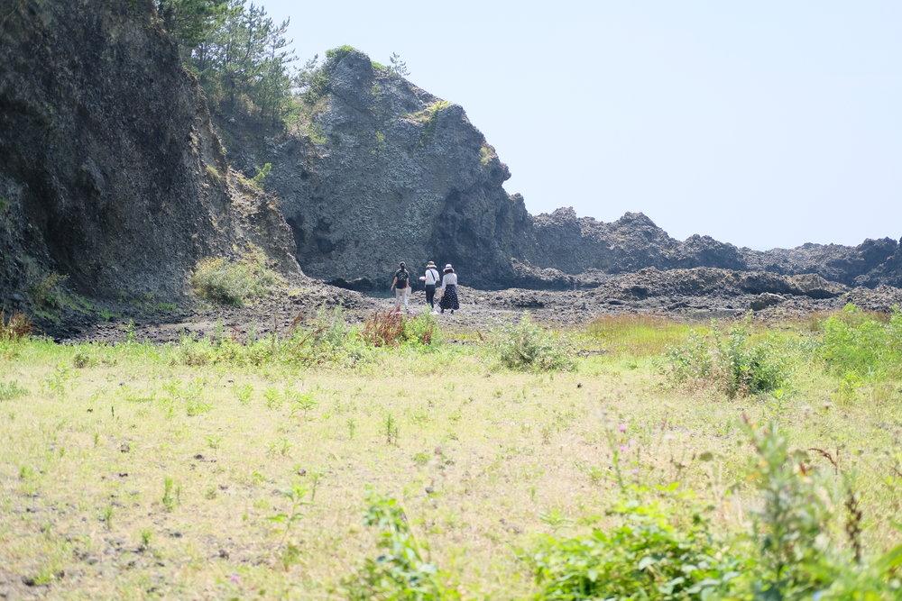 琴浦洞窟へ 草むらと岩場のコントラストが印象的