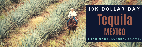 10K Dollar Day in Tequila, Jalisco, Mexico
