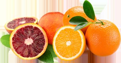 Arance - Descrizione: Arancia (Citrus sinensis) è il frutto dell'arancio, di forma sferica, con la buccia di colore acceso fra il giallo e il rosso. È un agrume ipocalorico, ricco di vitamina C, gradevole e con un ottimo insieme di sostanze nutrienti utili alla salute. L'arancia presenta esternamente una scorza (pericarpo, zeste), caratterizzata da una leggera ruvidezza, inizialmente di colore verde e poi, nel frutto maturo, gialla, arancione o rossastra. La parte interna (endocarpo) è polposa e commestibile ed è divisa in logge (spicchi) ricche di succo di colore giallo, arancione o rosso.Stagionalità: È un frutto invernale. Le prime arance si possono raccogliere in novembre (navelina) e le ultimi a maggio-giugno (valencia late).Proprietà: L'arancia è un frutto ipocalorico. Le arance a polpa rossa, pigmentate, contengono l'87% circa d'acqua, pochi grassi e proteine, molti minerali come calcio, fosforo, potassio, ferro selenio e soprattutto diverse vitamine fra cui oltre alla vitamina C, la A, B1, e la B2. Essendo relativamente scarsa di zuccheri, può essere consumata con una certa tranquillità anche da persone sofferenti di diabete. È un ottimo rimedio per combattere l'affaticamento. Contiene sali minerali come il calcio, il bromo che ha effetto calmante, il magnesio che contribuisce a mantenere l'equilibrio del sistema nervoso e costituisce difesa contro alcune malattie come il cancro, il fosforo che stimola l'attività cerebrale, lo zinco che aumenta l'azione e l'efficacia delle vitamine, il rame e il ferro che prendono parte al processo di fabbricazione dei globuli rossi, lo zolfo che rafforza legamenti e tendini. Contiene anche molti polifenoli molecole fortemente antiossidanti. È utile anche in caso di disturbi intestinali, epatici e gastrici. Come tutti gli agrumi, sono utilissime al sistema immunitario.