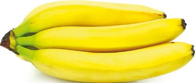 Banane - Descrizione: A forma oblunga, ha la porzione esterna (pericarpo) costituita da una buccia che originariamente è di colore verde, poi nel frutto maturo diventa gialla. La porzione interna è la polpa commestibile, carnosa, di colore biancastro e di gusto dolce e aromatico. Le banane pesano dai 125 ai 200 gr, variabile a seconda delle differenti cultivar. Il frutto è commestibile per circa l'80%, il restante 20% è buccia. Quasi tutte le moderne banane provengono dalle specie Musa acuminata e Musa balbisiana.Stagionalità: Le banane maturano generalmente in primavera/estate. È nota la tendenza di questo frutto a maturare anche dopo essere stato colto dalla pianta.Proprietà: Contiene elevate quantità di zuccheri, poche proteine e pochi grassi, sali minerali come calcio, ferro, magnesio, fosforo, zolfo, e soprattutto potassio (350 mg per 100 gr), vitamine A e C, serotonina (ormone che regola il sonno e il tono dell'umore, triptofano (un aminoacido che l'organismo trasforma in serotonina), tannini (presenti in quantità maggiori nel frutto acerbo). Essendo ricca di fibre, a differenza di altra frutta, ha anche un notevole potere saziante ed è pertanto adatta come spuntino nelle diete ipocaloriche. Le banane contengono mediamente il 74% di acqua, il 23% di carboidrati e il 2,6% di fibre alimentari, 1% di proteine, lo 0.5% di grassi. Una banana copre mediamente il 15-20% del fabbisogno giornaliero di potassio di un adulto e per questo è anche consigliata a chi soffre di crampi ed è impossibilitato a fare sport. La banana contiene anche la vitamina B6, che favorisce il metabolismo delle proteine.