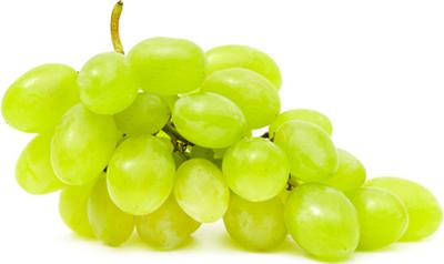 Uva - Descrizione: L'uva, frutto della vite, viene utilizzata soprattutto per la produzione del vino, e si parla in questo caso di uva da vino, ma anche per il consumo alimentare come frutta, sia fresca (uva da tavola), sia secca (uva passa, utilizzata in cucina e, nella preparazione dei dolci); Si presenta sotto forma di grappolo, composto da un graspo (o