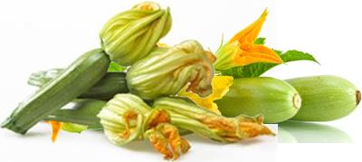 Zucchine - Descrizione: La zucchina è una specie della famiglia delle Cucurbitaceae i cui frutti sono utilizzati immaturi. La pianta che produce le zucchine è originaria dell'America centro-meridionale e appartiene alla stessa famiglia dei meloni, dei cetrioli e delle zucche gialle, cioè alle cucurbitacee.È cilindrica o tonda, ha polpa bianca, soda e ricca di semini a buccia varia di colore verde più o meno scuro, striato o punteggiato di giallo a seconda della varietà. Il loro sapore è abbastanza neutro e delicato.Stagionalità: Primavera/Estate, anche se è possibile trovarle n vendita tutto l'anno è preferibile consumarle nella stagione estiva perchè hanno più gusto, e costano meno.Proprietà: Contengono molte vitamine A, C, E, carotenoidi e acido folico. Sono  molto utili per astenie, infiammazioni urinarie, insufficienze renali, dispepsie, enteriti, dissenteria, stipsi, affezioni cardiache e diabete. La vitamina A contenuta nelle zucchine inoltre giova alla pelle, ne favorisce l'abbronzatura e ne combatte l'invecchiamento. Le zucchine hanno un'azione lassativa, antinfiammatoria, diuretica e disintossicante. Le zucchine forniscono poche calorie e inoltre hanno uno scarto limitato se sono giovani e piccole. Sono costituite da oltre il 90% di acqua, per questo in cottura si riducono molto di volume.
