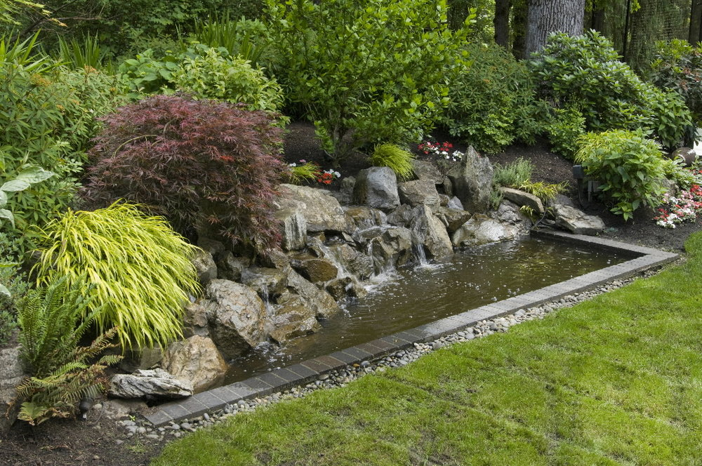 backyard-ponds-and-water-features_12839_1024_680.jpg