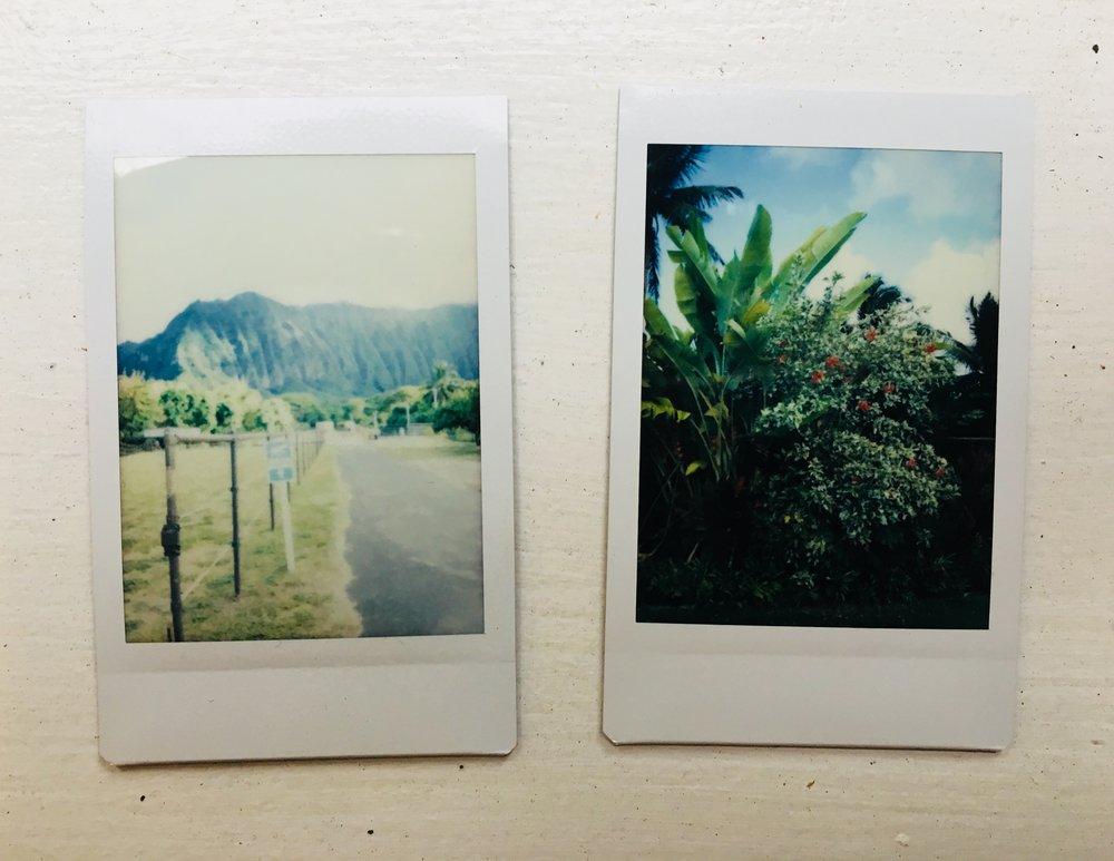 Photos from Hawaii 2018.