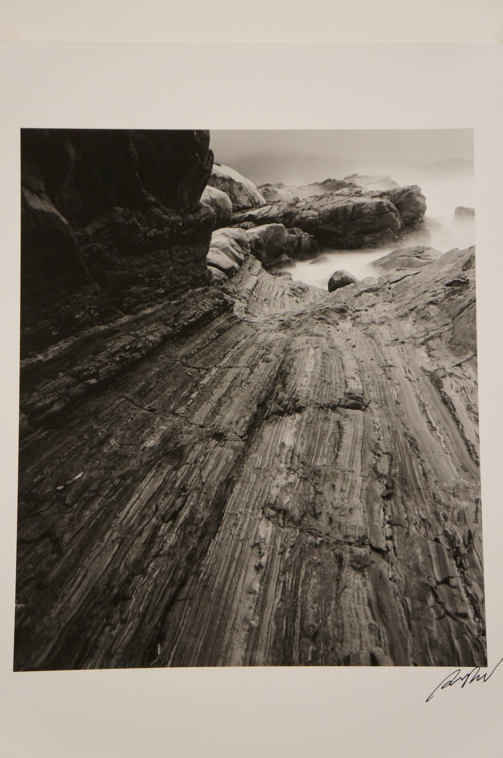 Glenn Rand, Point Lobos, gelatin silver print, 2002, 2010.2.1