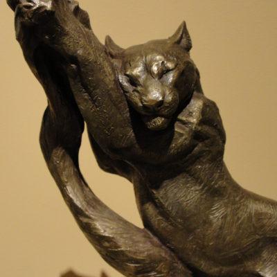 Puma Ways, D. L. Engle