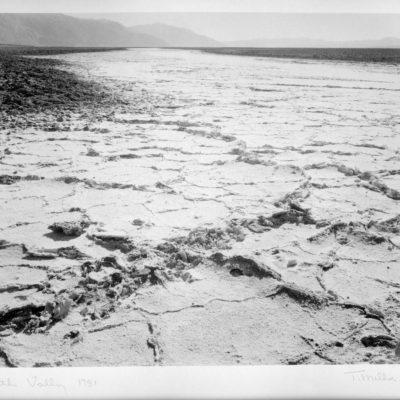 Death Valley 1981, Tom Millea