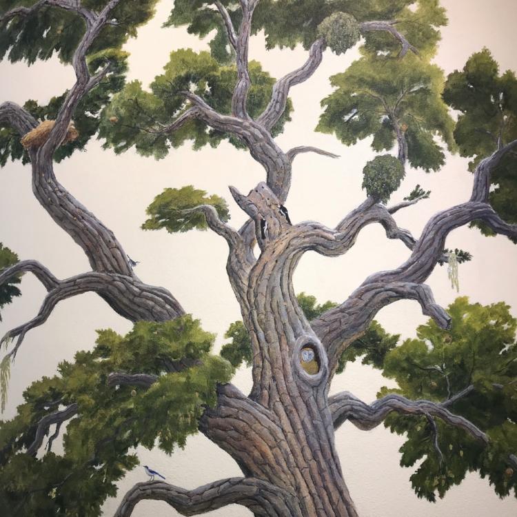 A Mighty Oak by John Iwerks
