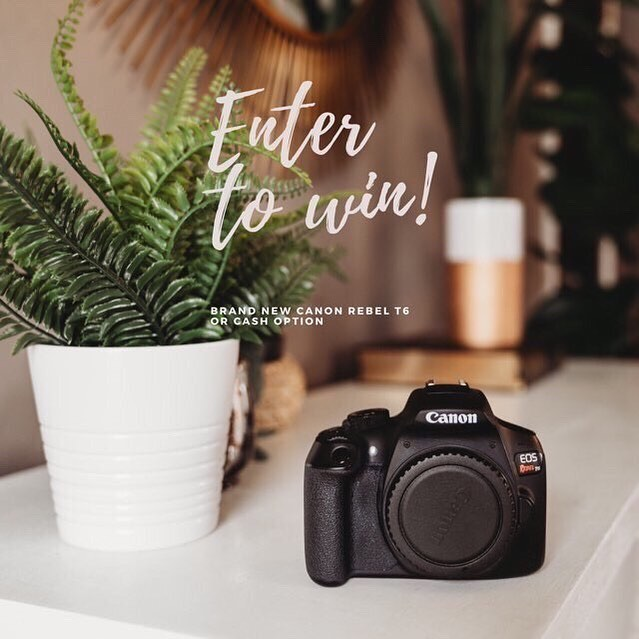 ✨Win a CAMERA!✨ . Teaming up with some awesome friends to give one of our followers a Canon Rebel T6 CAMERA!!!!! . To Enter: 1️⃣Follow @instagiveaways.1 and follow every one they are following!  2️⃣Like this photo!  3️⃣Tag a friend. (One per comment) More tags equal more entries! . Winner will be announced Thursday April 18th . Not sponsored by canon or Instagram. US and Canadian residents only. 📸: @turninglittlepages