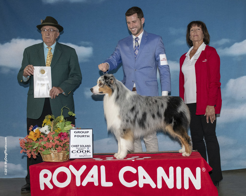 Best of Breed, Group 4 at 23 months -