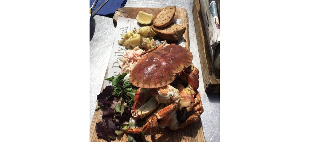 """The """"small"""" Dorset crab!"""