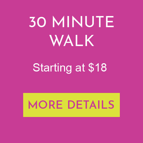 30 Minute Group Walk