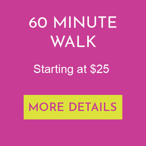 60 Minute Group Walk