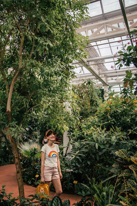 keywest_butterfly_garden.jpg