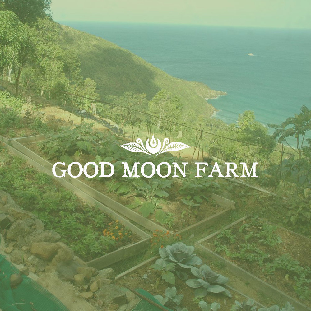Hosted by Good Moon Farms, this EcoProgram is for volunteers searching to make a long term commitment. This program helps repair the islands through construction, gardening, art, and carpentry. Stay 2 weeks or stay 2 months, the program has all the logistics covered.