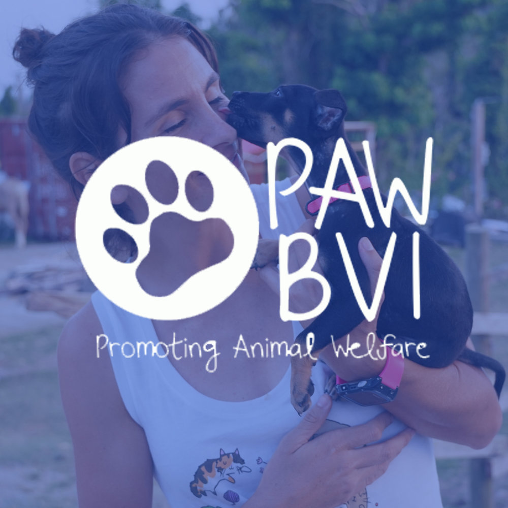 Paw BVI is an organization for animal lovers seeking to provide relief within the BVI through animal rescue, vaccines, tests, and fostering. Their main goal is to help reduce the spread of disease and cruel living conditions for animals in the BVI.