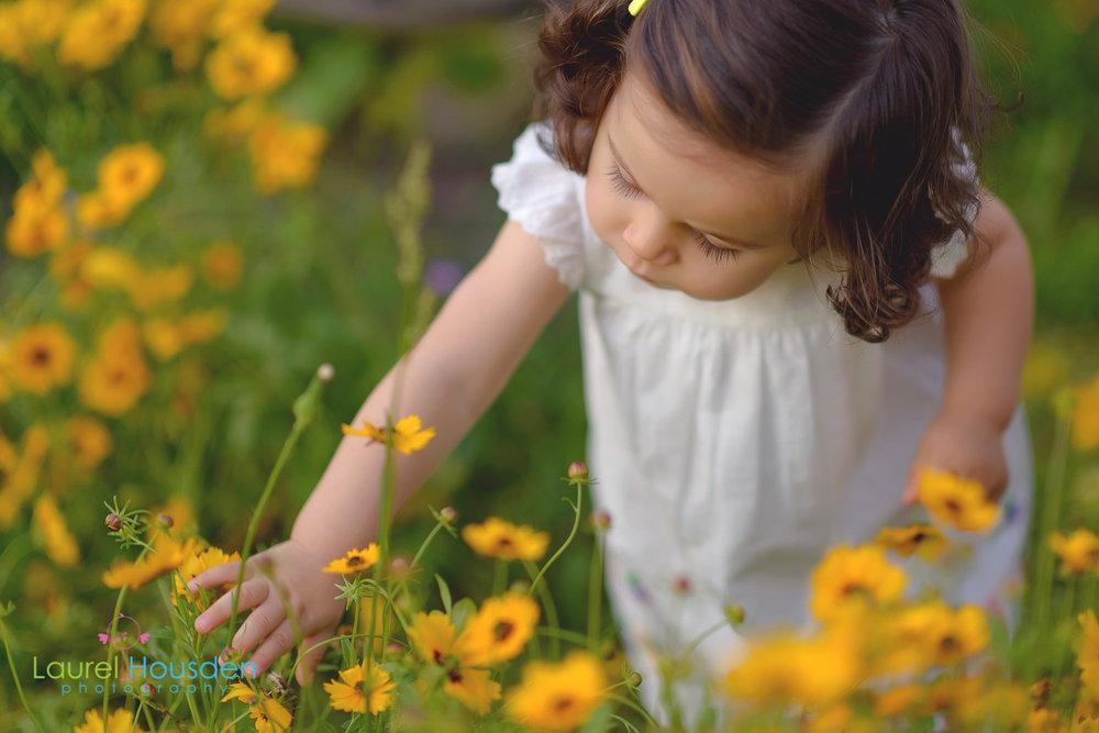 wildflowers--8.jpg