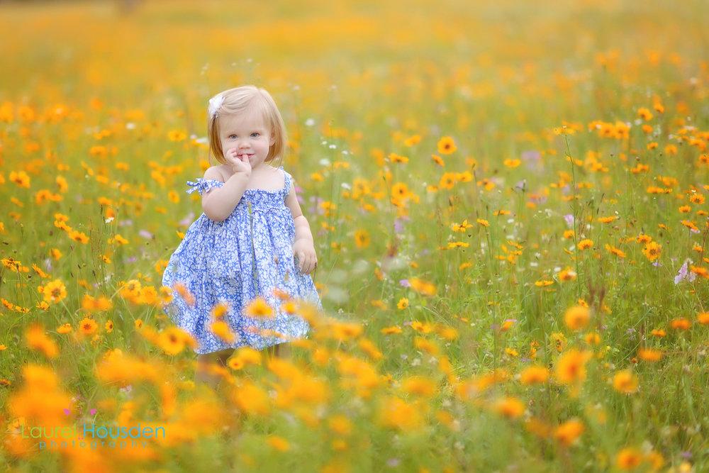 wildflowers--13.jpg