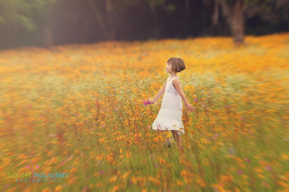 wildflowers-.jpg