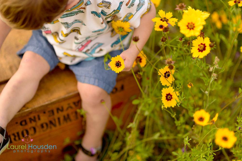 wildflowers-0470.jpg
