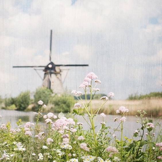Windmills - There's nothing more charming than historic windmills with a typical Dutch countryside view. Besides tulips and cheese (& chocolate!), the Netherlands has some of the most picturesque countryside landscapes that can not be found anywhere else in the world. We take you to the most beautiful old windmills around Amsterdam and top it off with a visit to a typical Dutch town. Of course fine chocolate tastings cannot be missed during this tour and we will drive along the little rivers with windmills lined up in our vintage Volkswagen van.More information