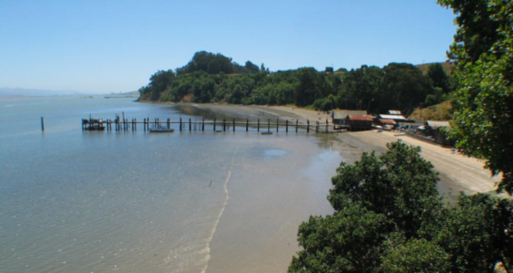 Beach at China Camp
