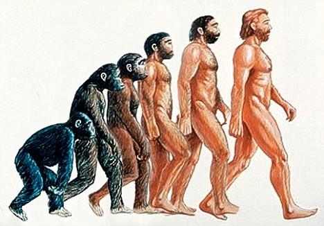 monkeyman.jpg