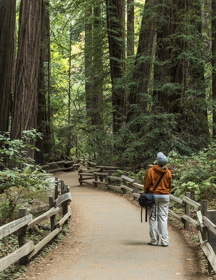 Muir Woods: This shot is a self portrait of me walking through the giant redwoods that make up the small preserved forest, Muir Woods National Monument. It was unbelievable to look up at those towering trees.