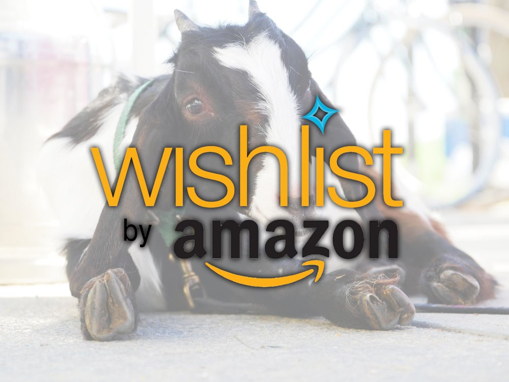 Purchase in-need items from Amazon