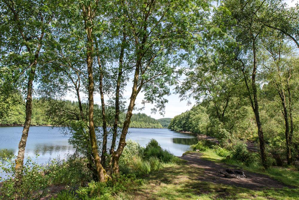 Loch Drunkie View