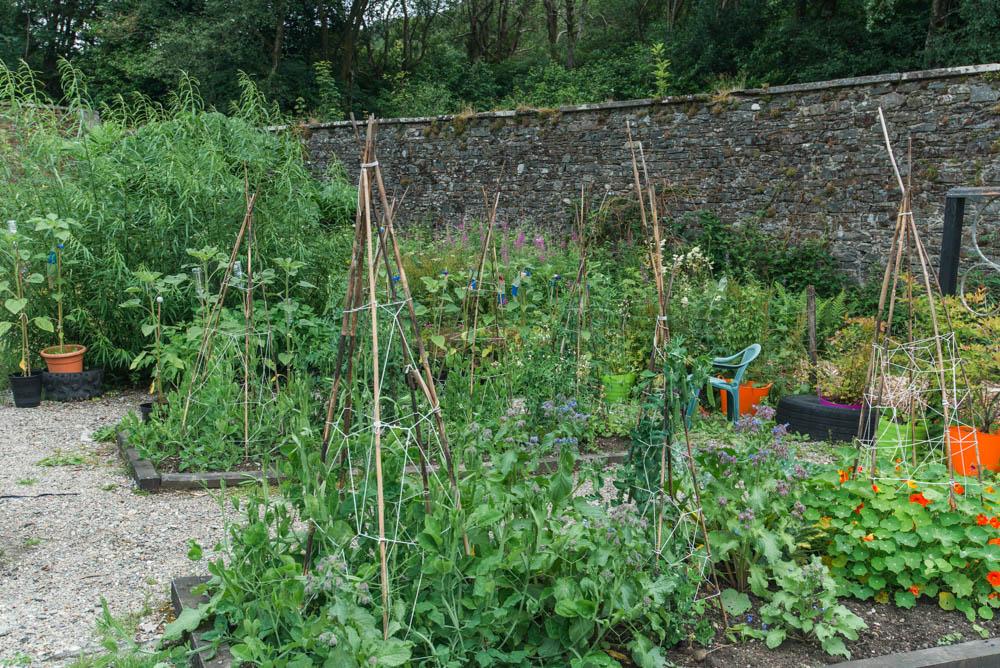Glenfinnart-Walled-Garden-Ardentinny-Argyll-Forest-Park-2071.jpg