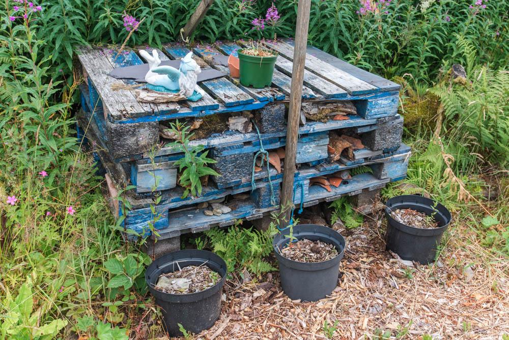 Glenfinnart-Walled-Garden-Ardentinny-Argyll-Forest-Park-2087.jpg