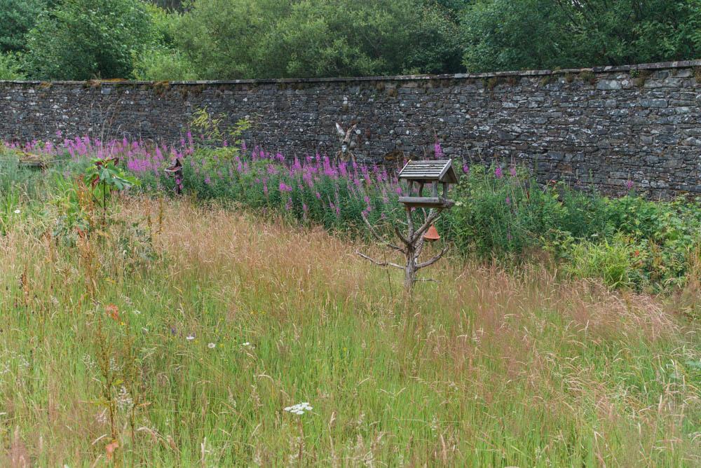 Glenfinnart-Walled-Garden-Ardentinny-Argyll-Forest-Park-2098.jpg