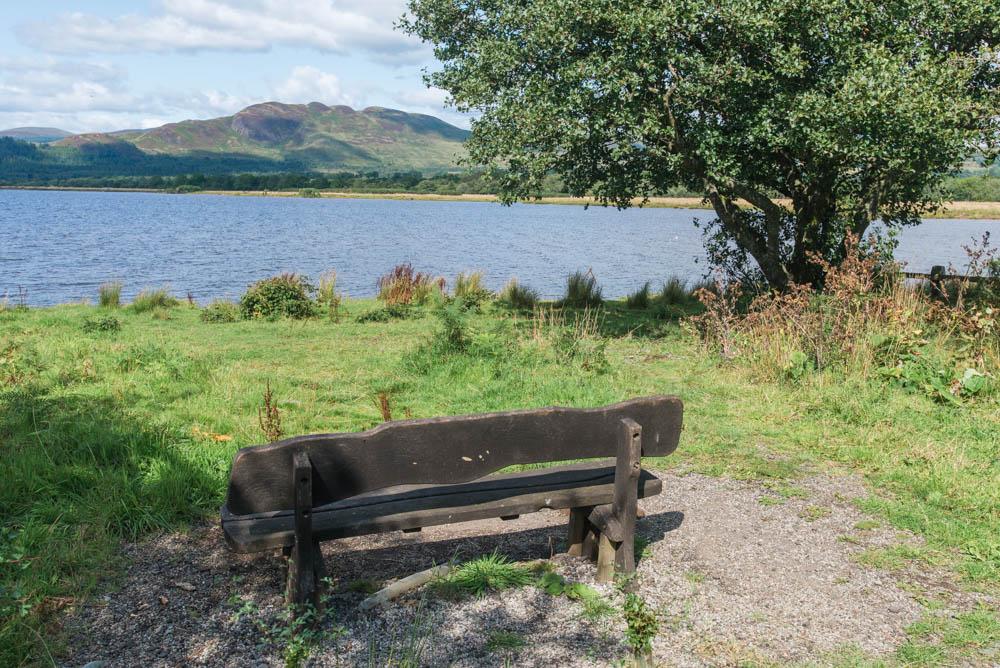 Aber-Shore-Gartocharn-Loch-Lomond-3143.jpg