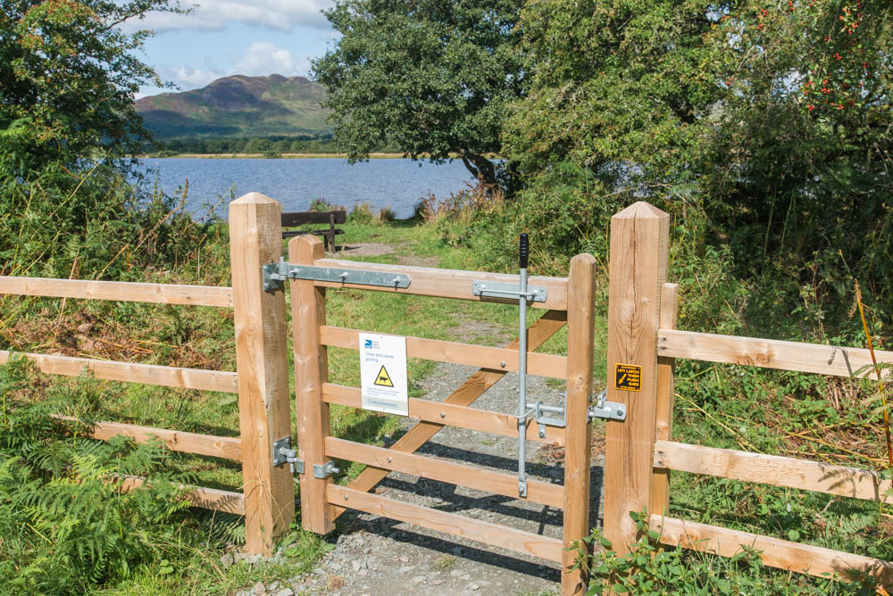 Aber-Shore-Gartocharn-Loch-Lomond-3141.jpg