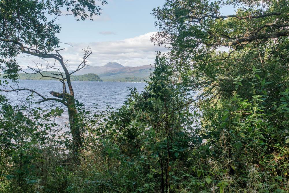 Aber-Shore-Gartocharn-Loch-Lomond-3101.jpg