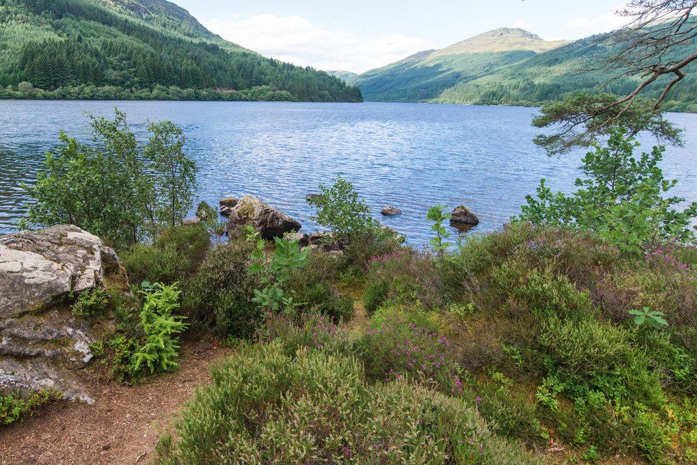 Loch-Eck-2271.jpg