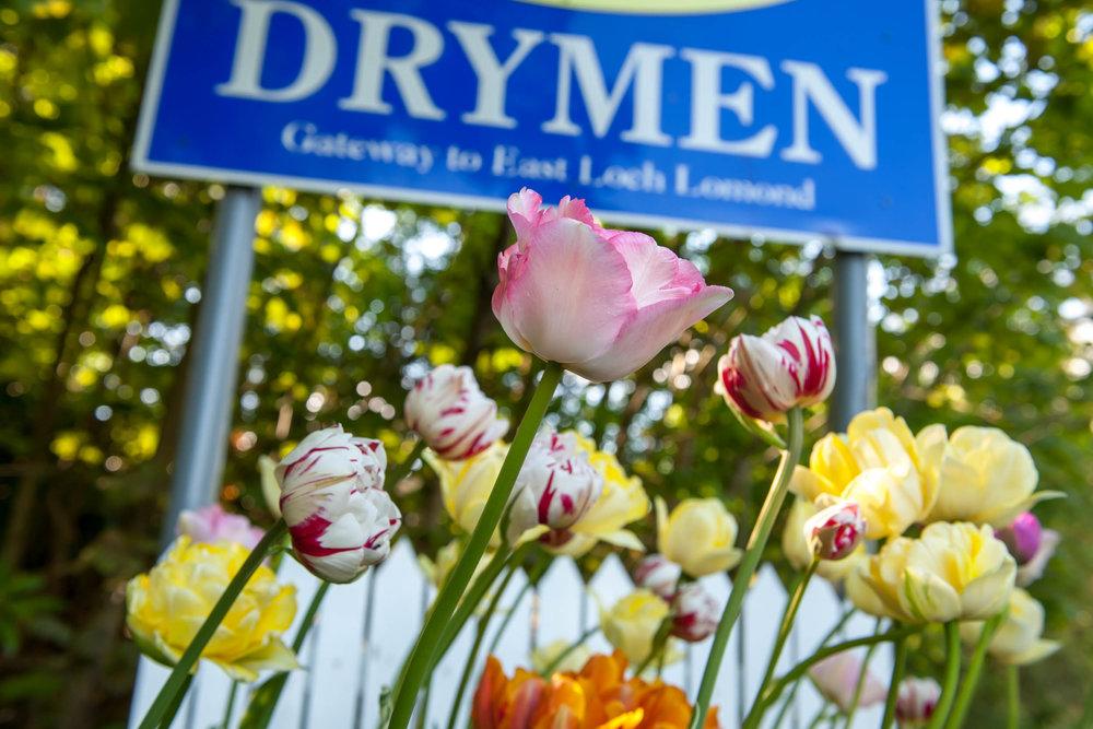 Drymen Gateway