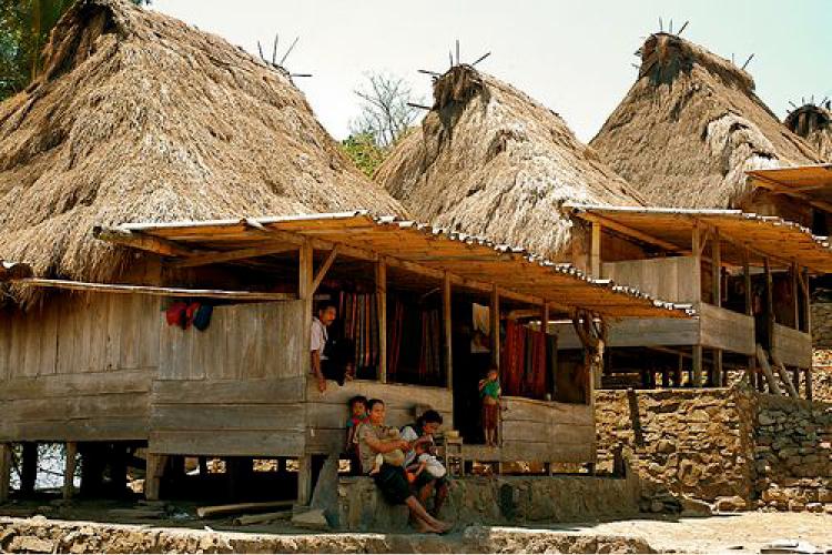 TVOF-Blog-Village Life-.jpg