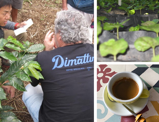 Dimitriana Coffee2.jpg