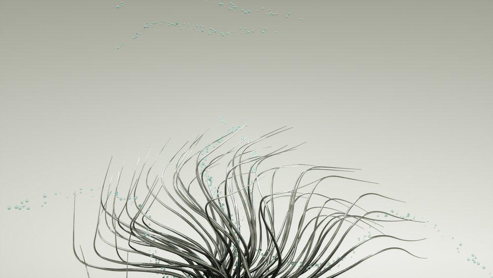 tentacles3_0074.jpg