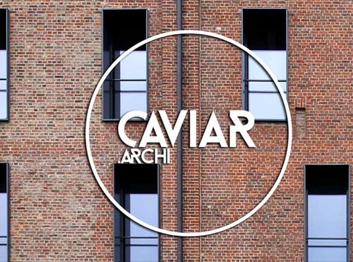 FA_video_caviar4.jpg