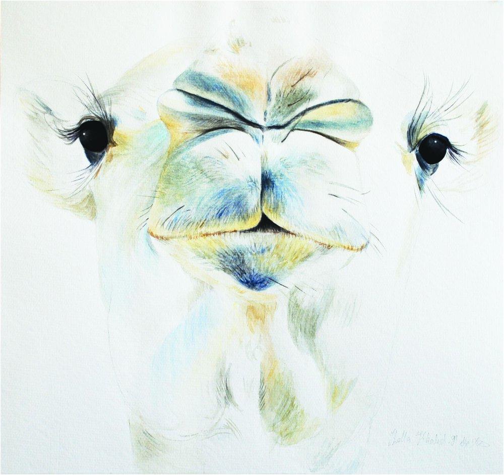 Lumloom, 1991, Watercolour on paper, 43.5 x 46.5 cm
