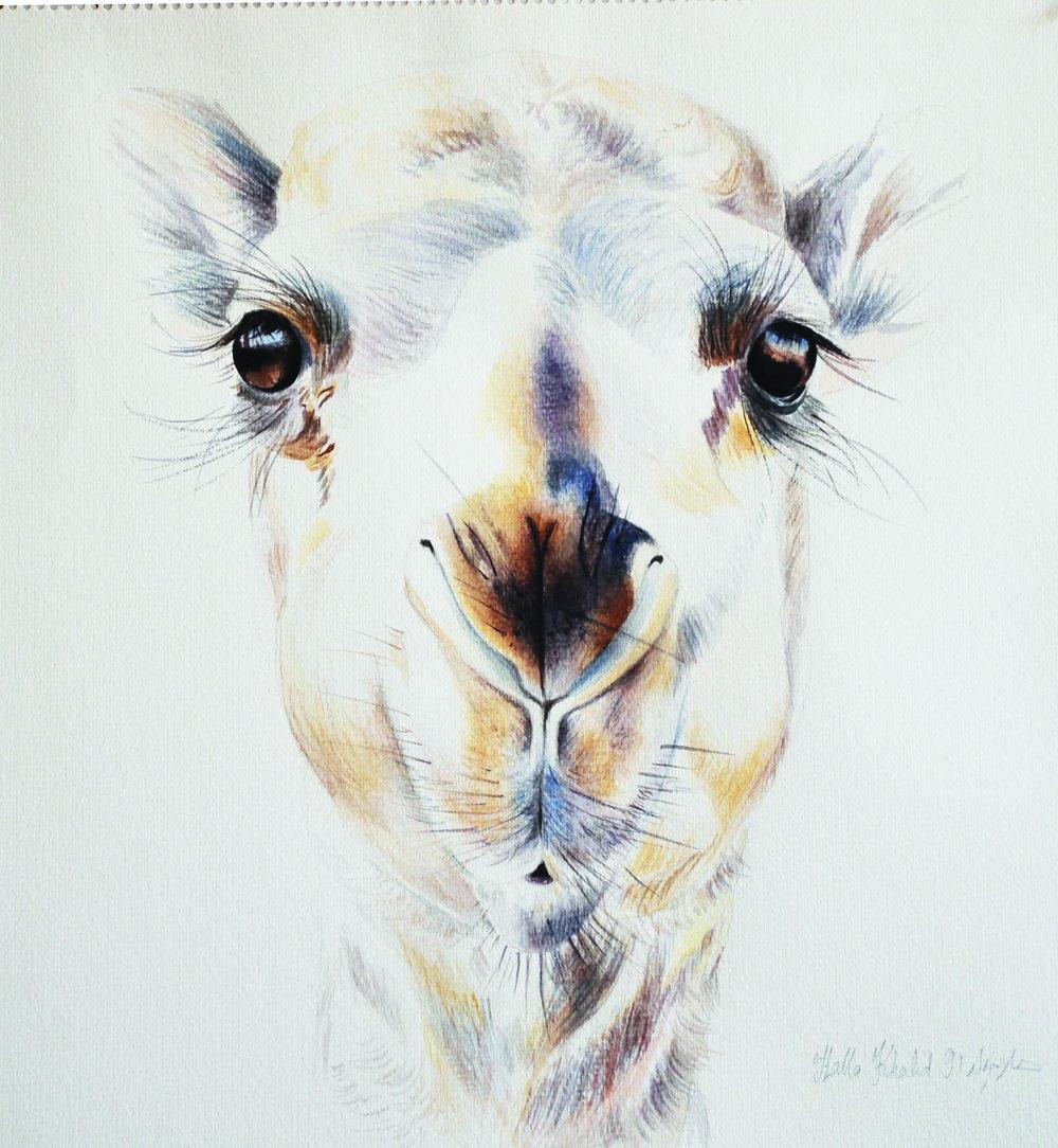Sunbul, 1991, Watercolour on paper, 43.5 x 46.5 cm
