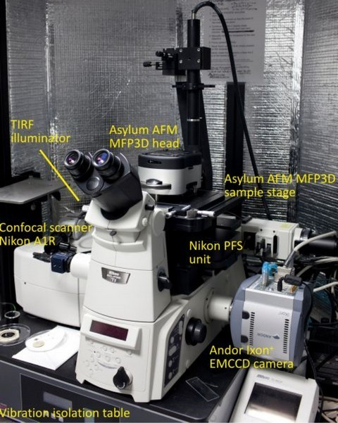 Figure 1:  Combined  Asylum Research  MFP-3D AFM and Nikon Ti/E fluorescence microscope. The  Nikon  microscope is equiped with a confocal scanhead (A1R, resonant scanner, spectral detector, VAAS, 4 lasers with 7 lines) on the left and an Andor EMCCD camera on the right and with lenses ranging from 10x/0.3 to 60x/1.49. This microscope is also capable of TIRF microscopy and has a PerfectFocus unit for maintaining focus over long time periods. Currently this is the only instrument in Ireland to combine Confocal and TIRF microscopy with AFM.