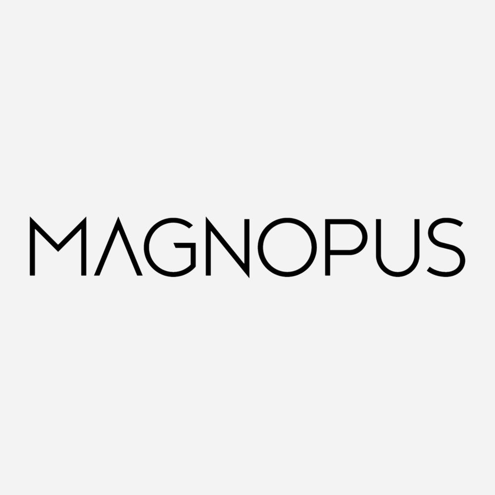 magnopus.png