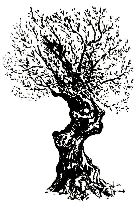 tree-vector.jpg