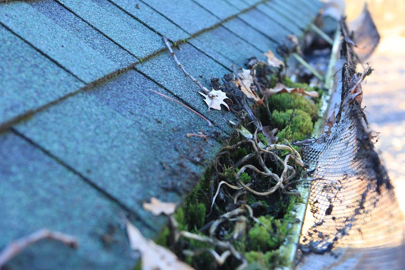 The state of the gutters before being cleaned