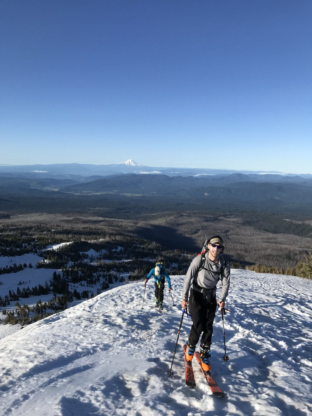 Above the trees, mt. Hood watching -